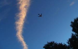 Airplaneinthesunsetsly